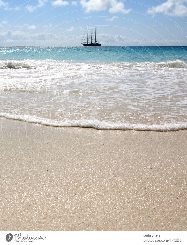 empfohlene reisezeit: IMMER!! Himmel Sonne Ferien & Urlaub & Reisen Meer Strand Wolken Ferne Freiheit Glück Wellen Zufriedenheit Ausflug frei Abenteuer Insel