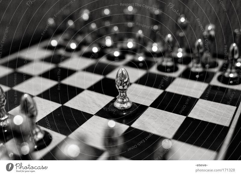 Einzelkämpfer Einsamkeit Brettspiel Spielen silber Silber Schachbrett einzeln Schachfigur Spielfigur Verantwortung Schwarzweißfoto Tapferkeit