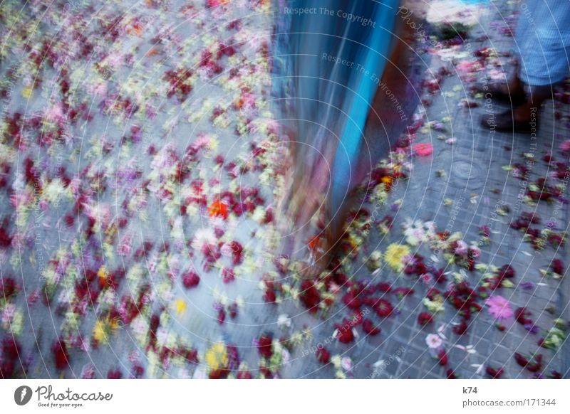 broken flowers Blume blau rot Blüte grau Schuhe Feste & Feiern Stoff Tracht