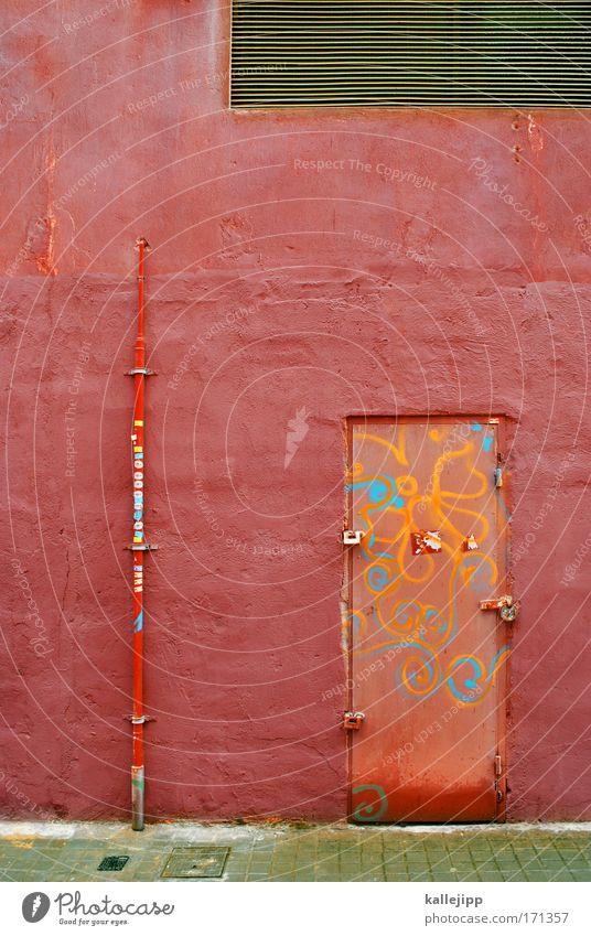 rohrschleicher Pflanze rot Haus Wand Fenster Stein Mauer Metall Tür Fassade Romantik Dekoration & Verzierung Schloss Altstadt rebellisch