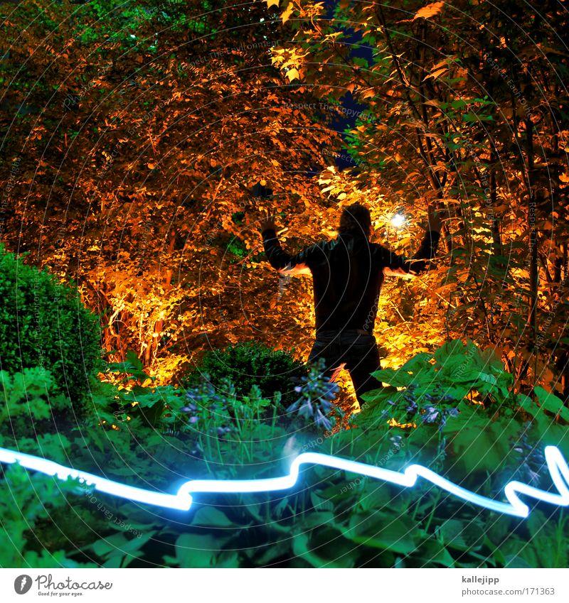 glühwürmchen attack Farbfoto Außenaufnahme Abend Nacht Licht Kontrast Silhouette Lichterscheinung Langzeitbelichtung Ferien & Urlaub & Reisen Safari Expedition
