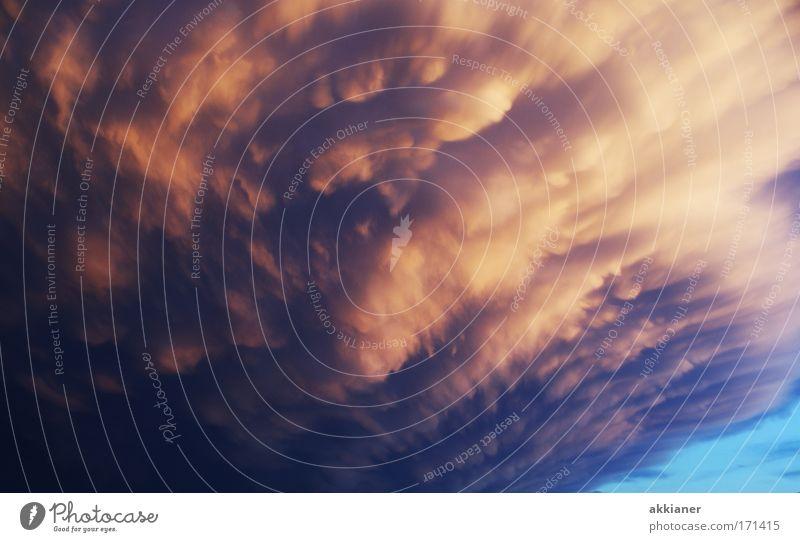 Böse Wolke Farbfoto Außenaufnahme Menschenleer Dämmerung Zentralperspektive Blick Umwelt Natur Landschaft Himmel nur Himmel Wolkenloser Himmel Gewitterwolken