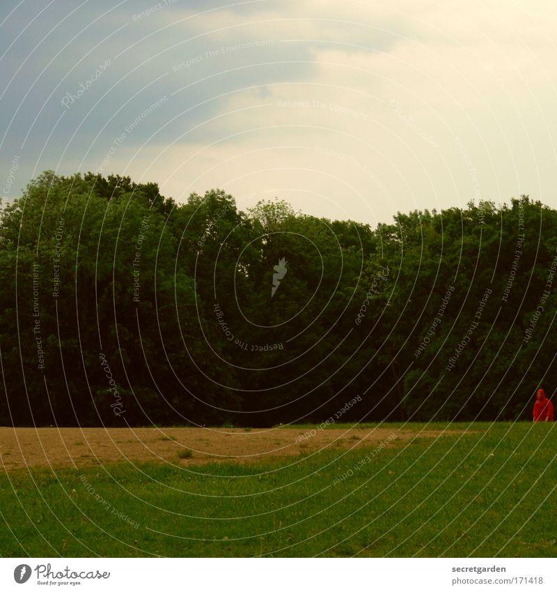 [HH09.3/4] wer findet rotkäppchen? Mensch Natur grün Baum Sommer Einsamkeit Wolken ruhig Wald Landschaft Wiese Garten Park Regen gehen