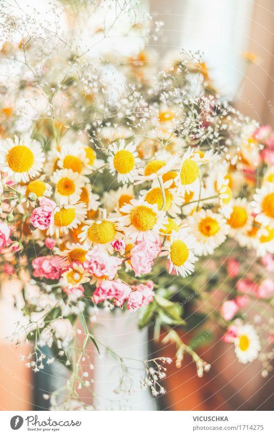Bouquet mit wilden Margeriten Natur Pflanze Sommer Blume Blatt gelb Leben Blüte Innenarchitektur Liebe Lifestyle Stil Feste & Feiern Design wild Häusliches Leben