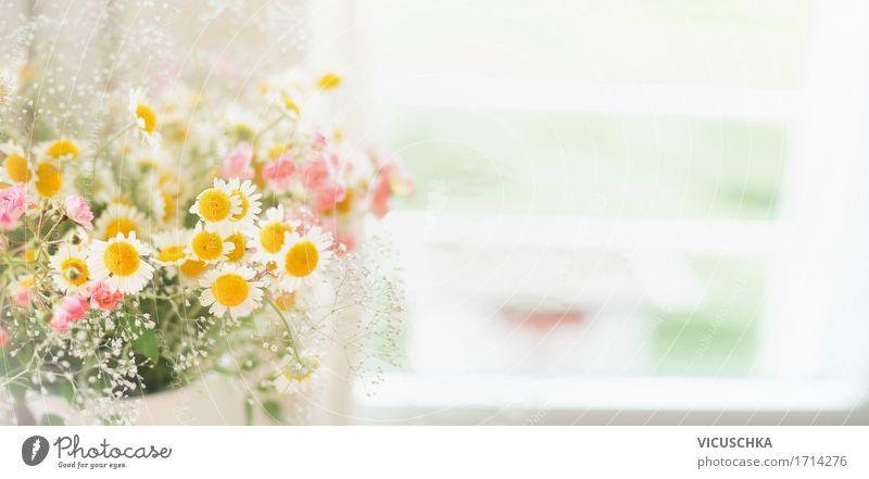 Hübsche wilde Margeriten Bündel am Fenster Natur Pflanze Sommer Blume Blatt Blüte Innenarchitektur Liebe Frühling Lifestyle Stil Garten Feste & Feiern rosa Design Wohnung