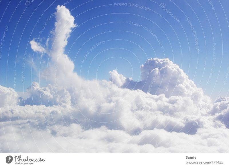 Wolkenmeer Wasser Himmel weiß blau Sommer Luft Flugzeug frei hoch Fröhlichkeit Sauberkeit Unendlichkeit Luftaufnahme Schönes Wetter positiv