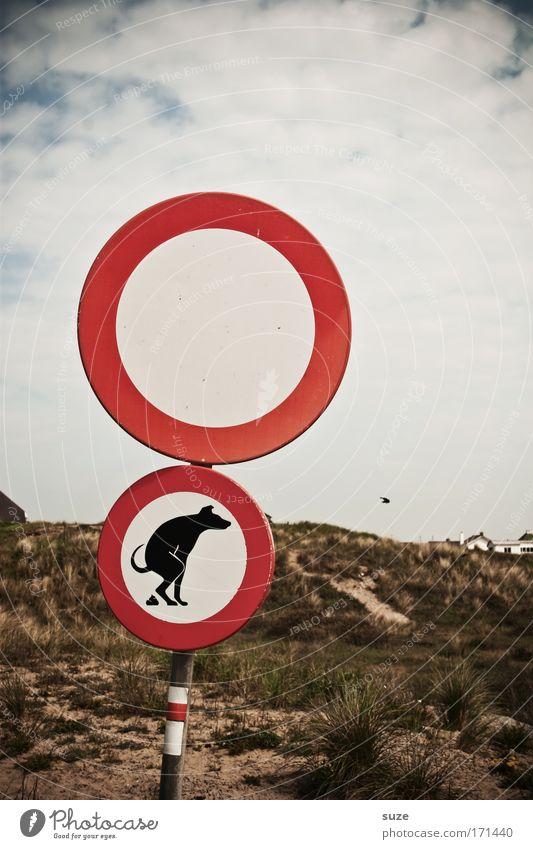 Wer ..... wird angemalt! Tier Hund Umwelt lustig Schilder & Markierungen Zeichen Kot Stranddüne Verkehr Verkehrsschild Verbote Umweltschutz Umweltverschmutzung