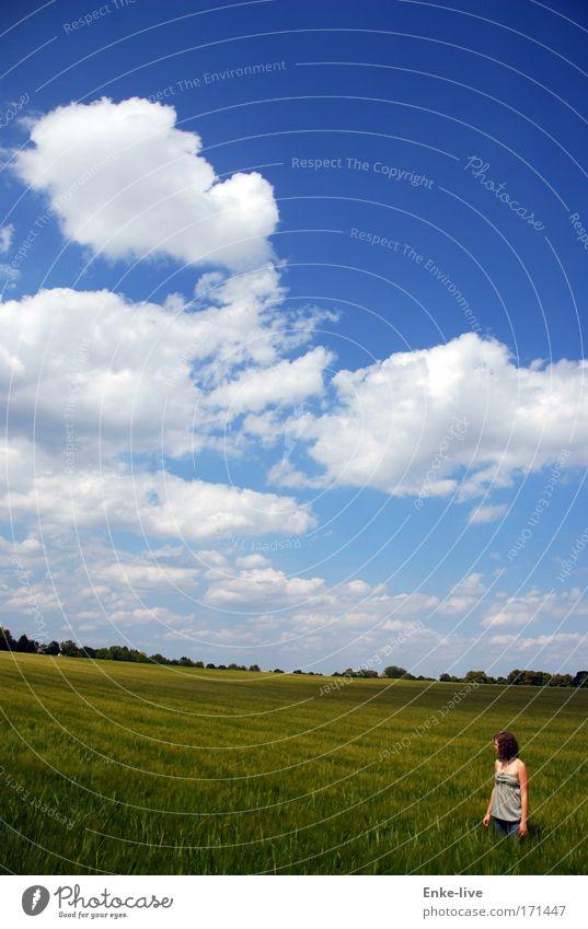 gute Aussichten Himmel Natur Jugendliche blau schön Wolken Landschaft Stimmung Gesundheit Feld Beginn authentisch außergewöhnlich stehen einzigartig