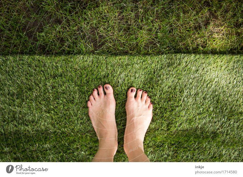 flauschig   Rasenfläche Lifestyle Stil schön Körperpflege Pediküre Nagellack Freizeit & Hobby Frau Erwachsene Leben Fuß Frauenfuß 1 Mensch Sommer Schönes Wetter