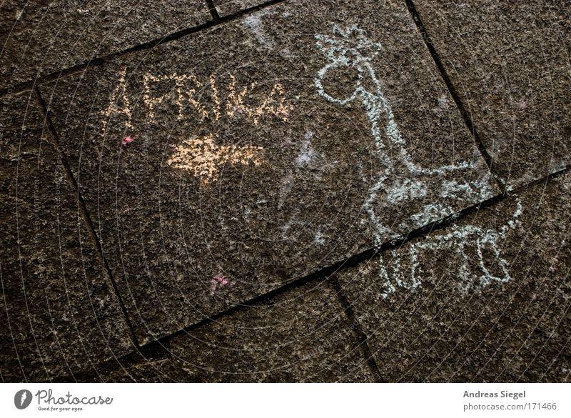 Da lang gehts nach Afrika! Freude Tier Straße Spielen Glück Kunst Freizeit & Hobby Tierjunges gehen Beton Fröhlichkeit Erfolg Schriftzeichen Lifestyle trist