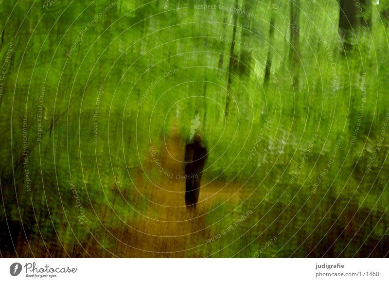 Gestalt im Wald Mensch Mann Natur Baum grün Sommer Einsamkeit Frühling Angst Erwachsene wandern gehen maskulin laufen Umwelt