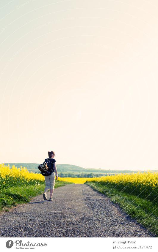 Wanderschaft Mensch Natur Jugendliche ruhig Erwachsene gelb Umwelt Bewegung Wege & Pfade Frühling Horizont Feld gehen laufen wandern Frau