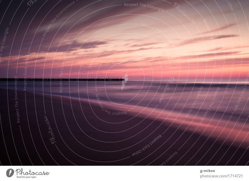 Ostsee Wasser Meer Ferne groß Unendlichkeit positiv Wärme ruhig Ferien & Urlaub & Reisen Strand Holzpfahl violett Farbfoto Außenaufnahme Menschenleer Dämmerung