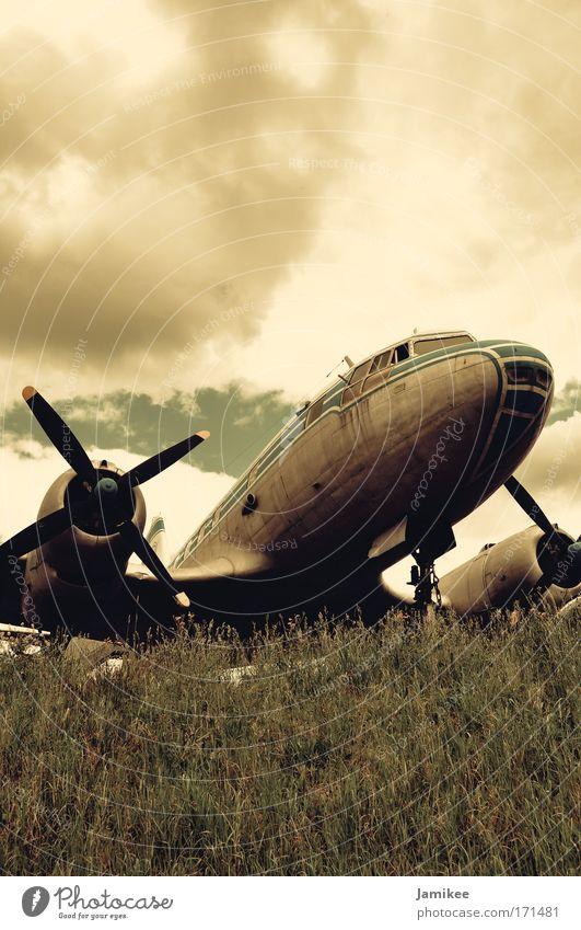 Altes Flugzeug IL-14 alt blau grün Sommer Wolken Einsamkeit Wiese Wärme Arbeit & Erwerbstätigkeit Zufriedenheit Flugzeug ästhetisch Fröhlichkeit Luftverkehr Sehnsucht Vertrauen