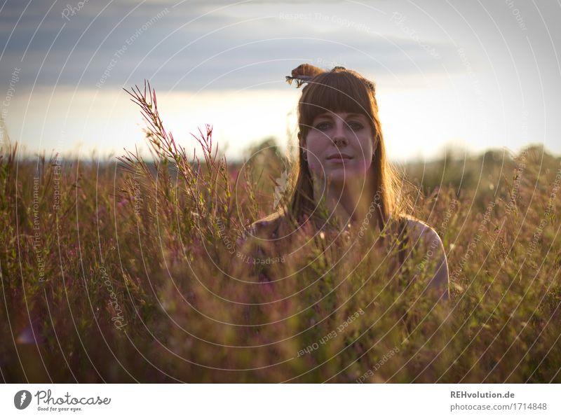 Carina | im Abendlicht Mensch feminin Junge Frau Jugendliche Gesicht 1 18-30 Jahre Erwachsene Umwelt Natur Landschaft Himmel Sonne Sommer Blume Gras Sträucher