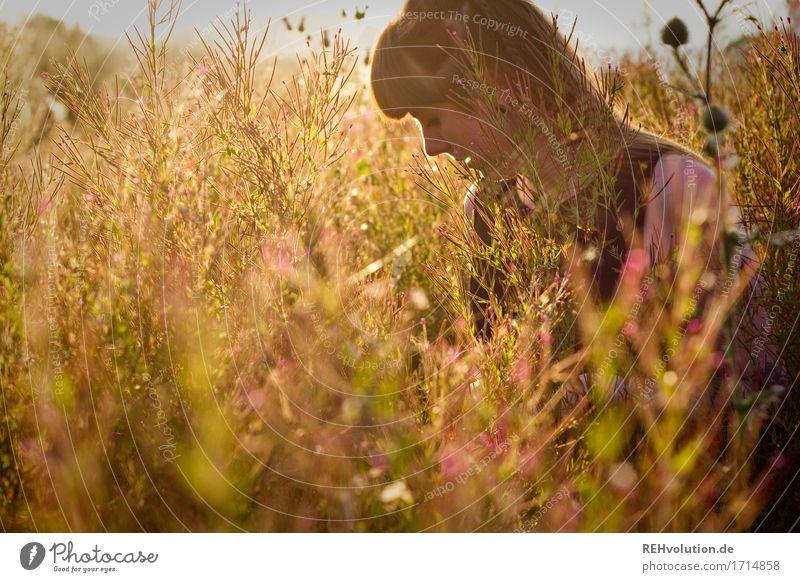Carina   Blumenwiese Mensch feminin Junge Frau Jugendliche 1 18-30 Jahre Erwachsene Umwelt Natur Landschaft Pflanze Sonne Sonnenaufgang Sonnenuntergang