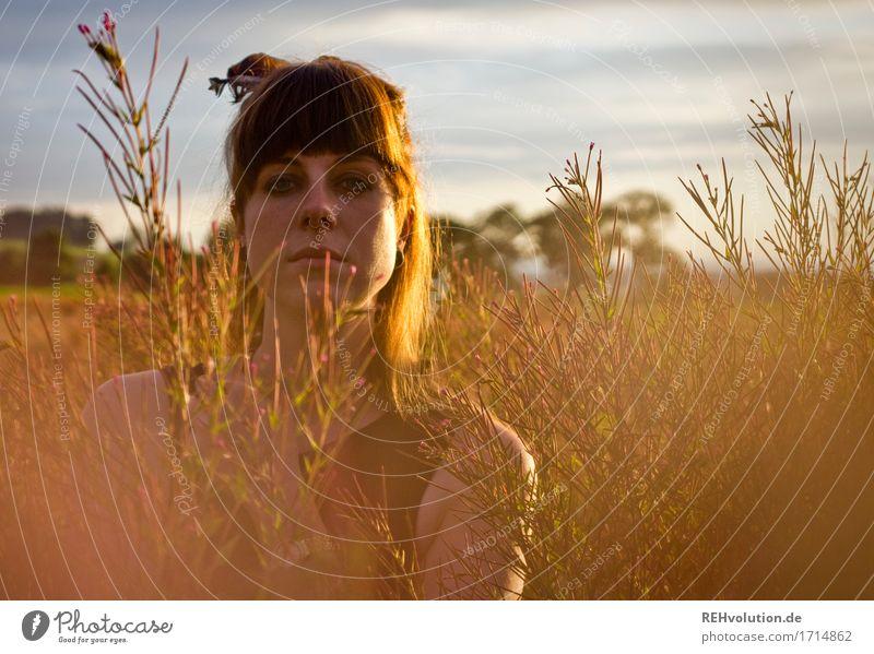 Carina | im Abendlicht Mensch feminin Junge Frau Jugendliche Gesicht 1 18-30 Jahre Erwachsene Umwelt Natur Landschaft Himmel Wolken Sonne Wiese Feld Piercing