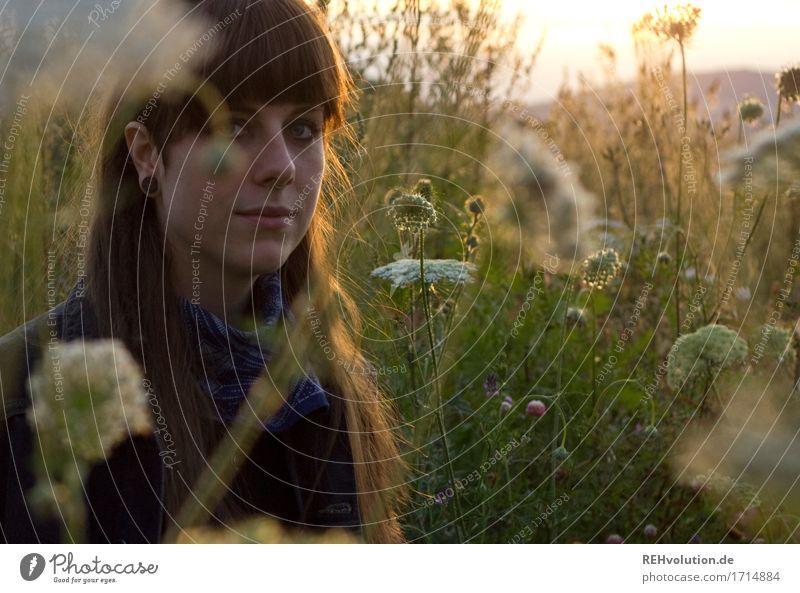 Carina | Portrait in einer Sommerwiese Frau Mensch Natur Jugendliche Junge Frau schön Landschaft Blume 18-30 Jahre Gesicht Erwachsene Lifestyle Umwelt natürlich