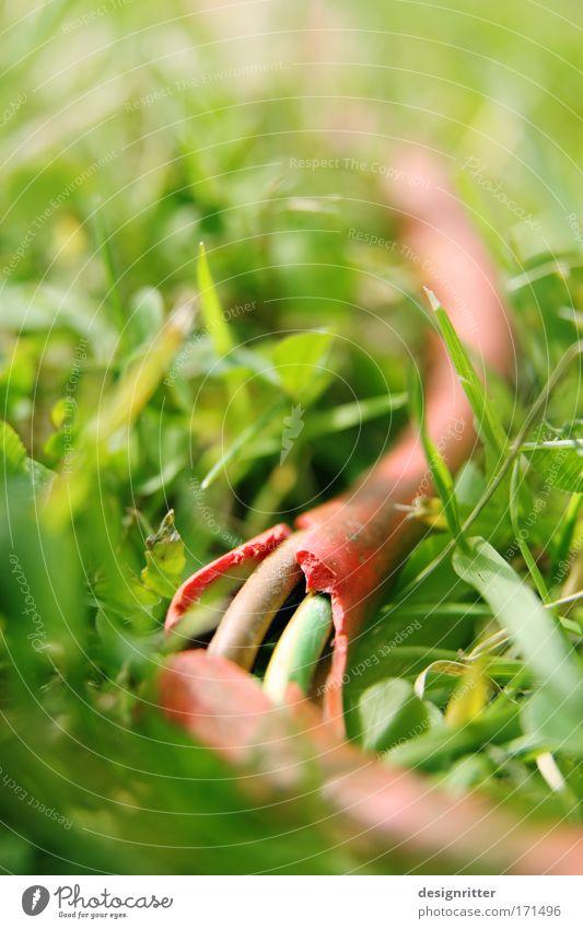Gefährliches Reptil alt Sommer Wiese Spielen Gras Garten Energiewirtschaft gefährlich Elektrizität kaputt Kabel bedrohlich Rasen Spielzeug Verbote