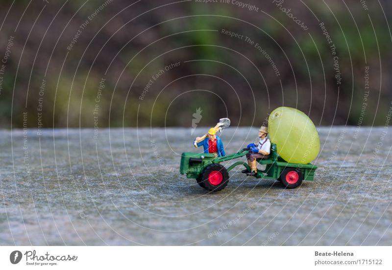Zeit, die Ernte einzufahren Mensch Mann blau grün Landschaft rot Erwachsene Umwelt Straße Herbst außergewöhnlich Lebensmittel Arbeit & Erwerbstätigkeit Frucht