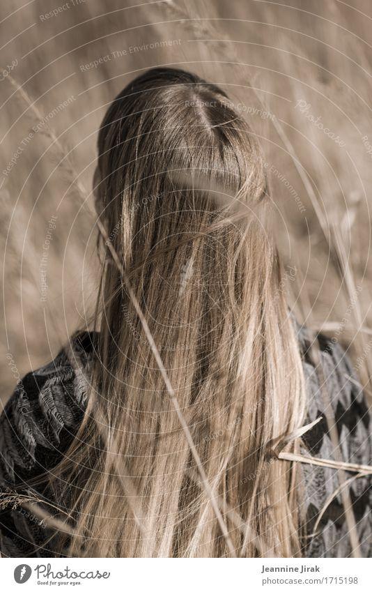Blondes Feld Haare & Frisuren harmonisch Wohlgefühl Erntedankfest feminin Junge Frau Jugendliche Natur Sonne Schönes Wetter blond rothaarig langhaarig
