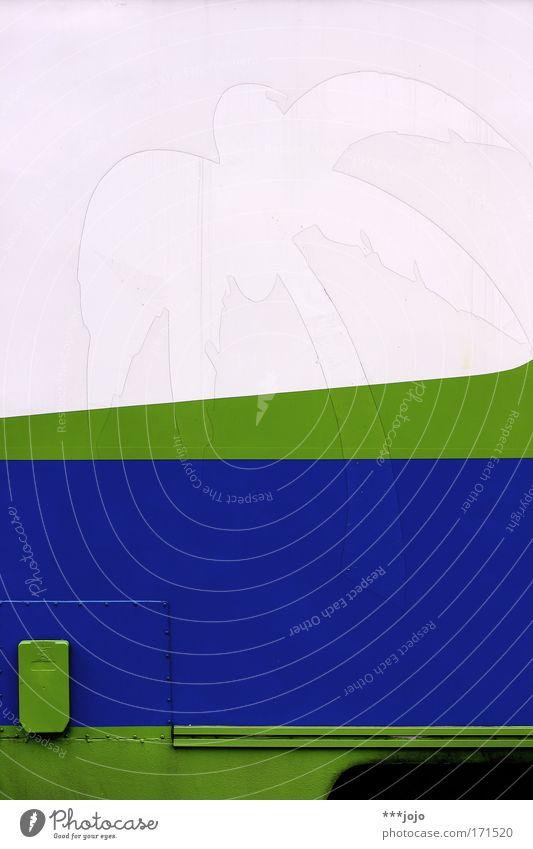 palm beach. Farbfoto Außenaufnahme Detailaufnahme Menschenleer Silhouette Ferien & Urlaub & Reisen Tourismus Ferne Sommerurlaub Insel Natur Pflanze exotisch