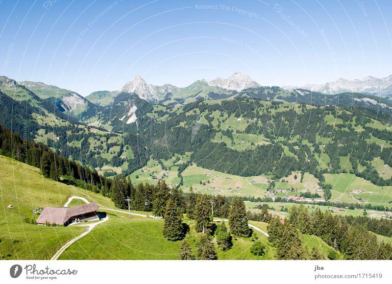 Flug nach Gstaad II Lifestyle harmonisch Wohlgefühl Zufriedenheit Erholung ruhig Freizeit & Hobby Ausflug Abenteuer Ferne Freiheit Gleitschirmfliegen