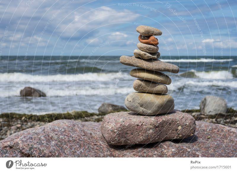 baltic sea Erholung ruhig Meditation Ferien & Urlaub & Reisen Tourismus Sightseeing Sommer Sommerurlaub Sonne Strand Meer Wellen wandern Umwelt Natur Landschaft