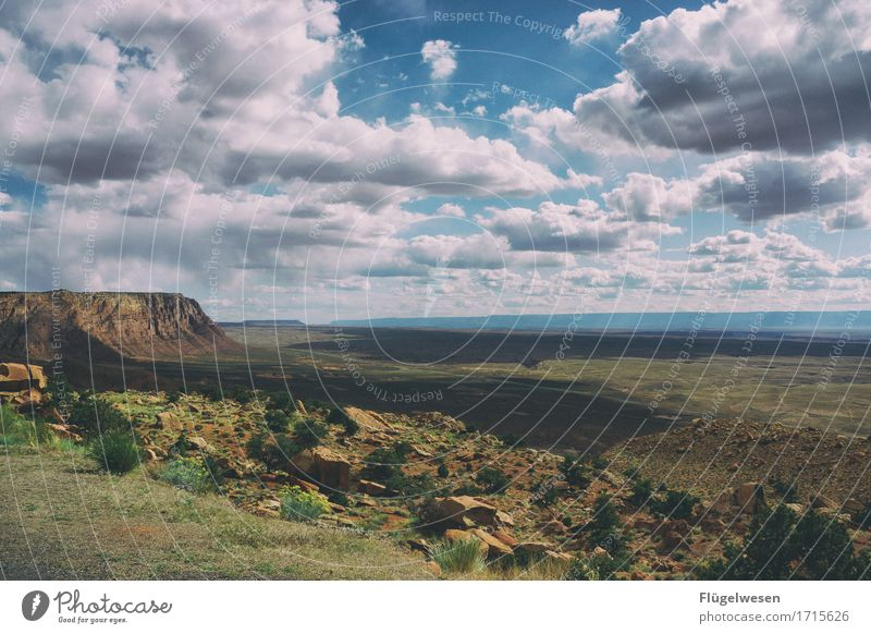 Beautiful Amerika (a) Himmel Wolken Tag Schatten Berge u. Gebirge Grand Canyon USA Landschaft Pflanze Tier Aussicht Ferne Menschenleer Sträucher Vulkankrater