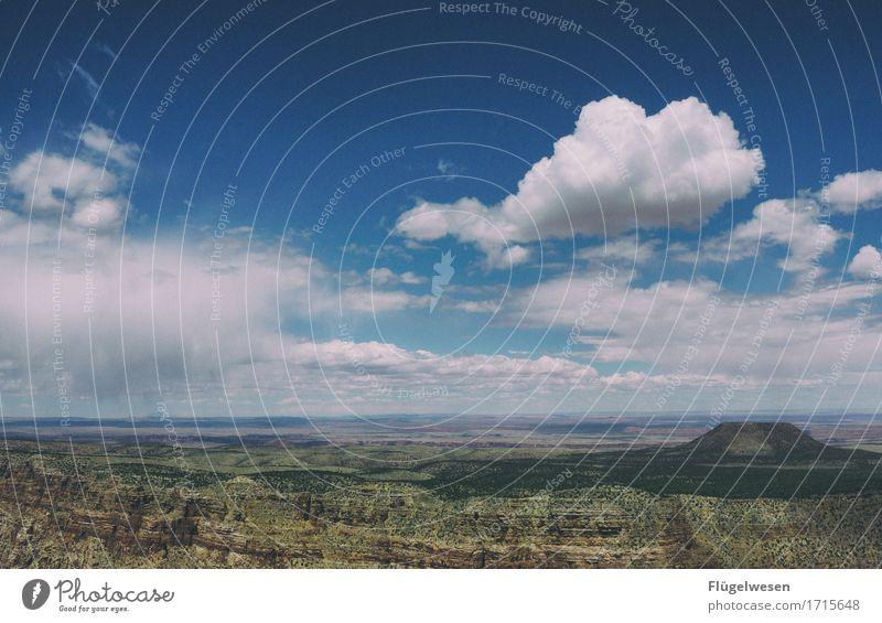Beautiful Amerika (c) Himmel Wolken Tag Schatten Berge u. Gebirge Grand Canyon USA Landschaft Pflanze Tier Aussicht Ferne Menschenleer Sträucher Vulkankrater
