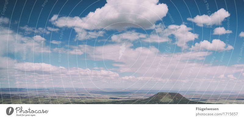 Beautiful Amerika (e) Himmel Ferien & Urlaub & Reisen Pflanze Landschaft Wolken Tier Ferne Berge u. Gebirge Freiheit Sträucher Aussicht USA Wüste