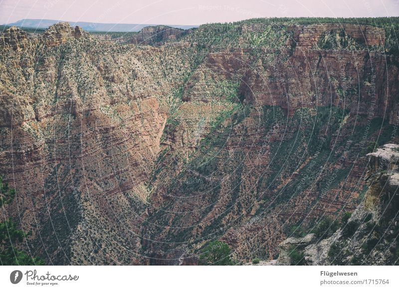 Beautiful Amerika (t) Himmel Wolken Tag Schatten Berge u. Gebirge Grand Canyon USA Landschaft Pflanze Tier Aussicht Ferne Menschenleer Sträucher Vulkankrater