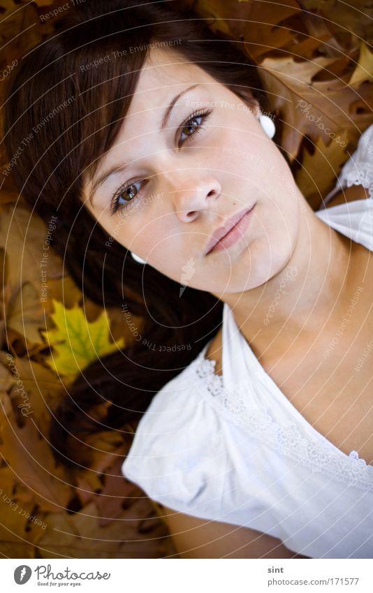 auflaub Farbfoto Außenaufnahme Nahaufnahme Tag Porträt Blick Blick in die Kamera Mensch feminin Junge Frau Jugendliche 1 18-30 Jahre Erwachsene Natur Herbst