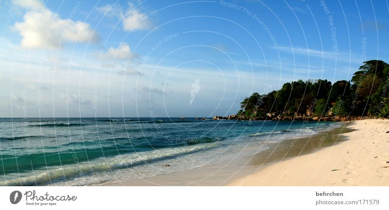 tagtraum Himmel Sommer Strand Ferien & Urlaub & Reisen Meer Wolken Ferne Freiheit Glück träumen Küste Wellen Zufriedenheit Ausflug Insel Tourismus