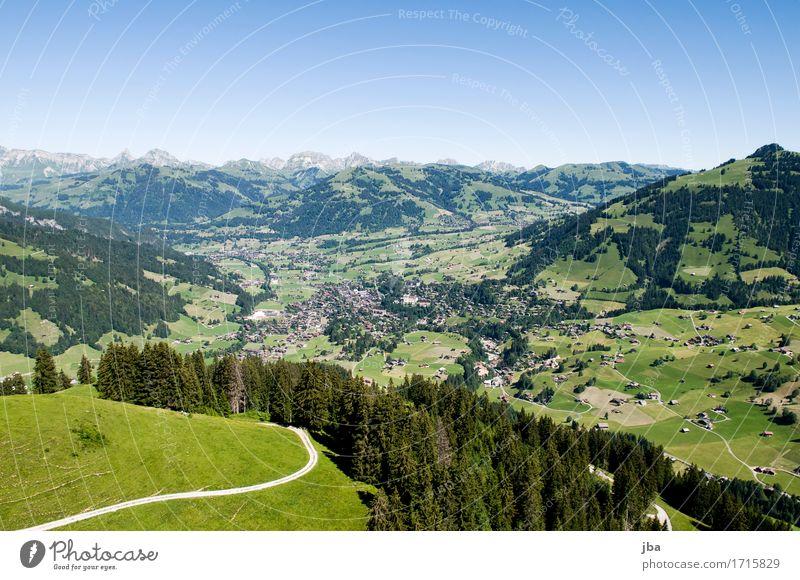 Flug nach Gstaad I Himmel Natur Sommer Landschaft Erholung ruhig Ferne Berge u. Gebirge Leben Wege & Pfade Sport Lifestyle Freiheit fliegen Zufriedenheit Luft