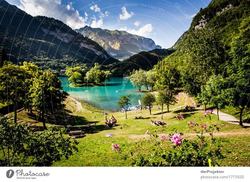 Lago di Tenno in Italien Natur Ferien & Urlaub & Reisen Pflanze Sommer Baum Landschaft Tier Freude Ferne Wald Berge u. Gebirge Umwelt Glück Freiheit See Felsen