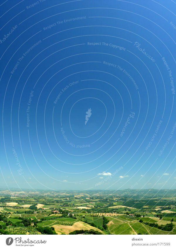 What a Wonderful World Natur schön Himmel grün blau Sommer Ferien & Urlaub & Reisen ruhig gelb Leben Erholung Freiheit Landschaft braun Feld Wetter