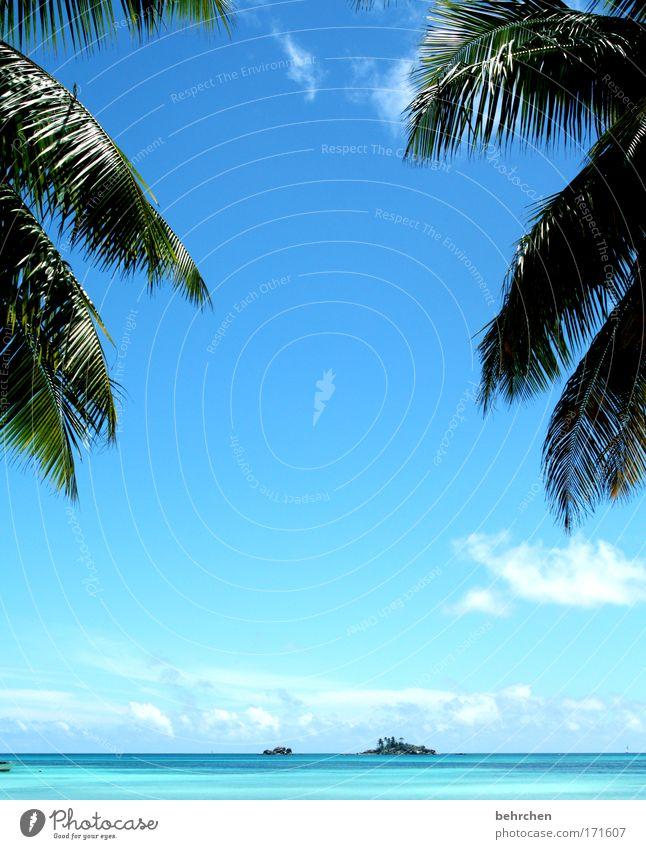 für meinen engel schön Himmel Meer blau Ferien & Urlaub & Reisen Wolken Ferne Freiheit Glück träumen Zufriedenheit Wellen Küste Sicherheit Fröhlichkeit