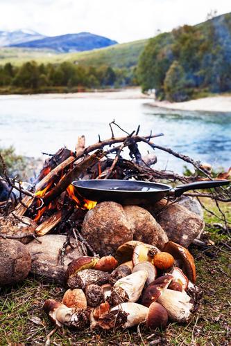 Outdoorküche Lebensmittel Ernährung Mittagessen Abendessen Picknick Bioprodukte Vegetarische Ernährung Pfanne Ferien & Urlaub & Reisen Abenteuer Freiheit Natur