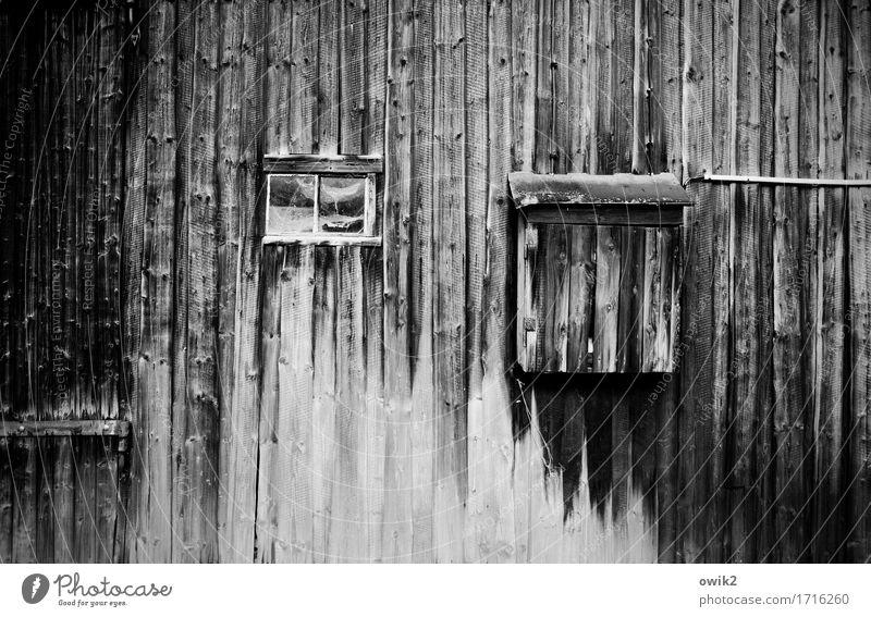 Altes Holztor alt Fenster Gebäude trist Vergänglichkeit Vergangenheit verfallen Verfall Tor Scheune Holzwand Schaden Scharnier Zahn der Zeit Scheunentor