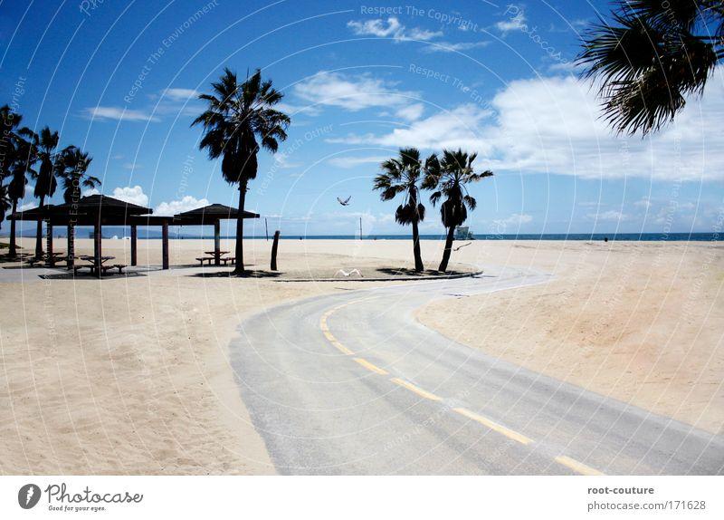 Highway to Heaven Himmel Natur blau schön Wasser Sommer Baum Erholung Landschaft Strand Umwelt Küste Wege & Pfade Sand Horizont Vogel