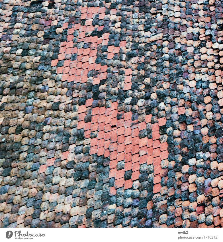 Ziegelei Haus Dach Dachziegel oben viele Farbfoto Gedeckte Farben Außenaufnahme Detailaufnahme abstrakt Muster Strukturen & Formen Menschenleer