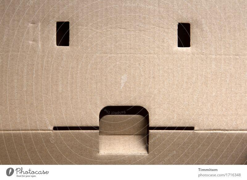 Hat ein Karton Gefühle? Verpackung Linie ästhetisch eckig einfach schwarz beige Rechteck Schlitz Lasche Knick Gesicht Farbfoto Innenaufnahme Menschenleer