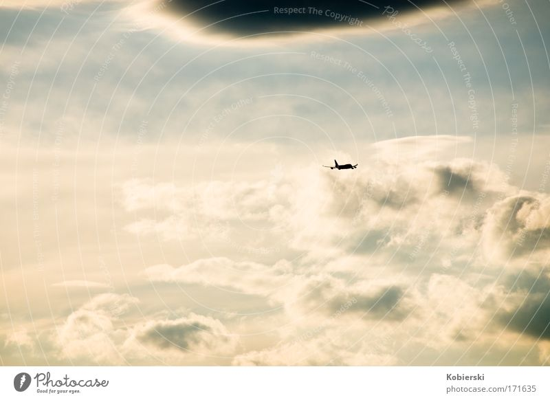 Abschied Farbfoto Außenaufnahme Luftaufnahme Menschenleer Abend Sonnenaufgang Sonnenuntergang Panorama (Aussicht) Ferien & Urlaub & Reisen Freiheit Luftverkehr