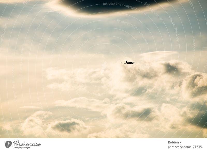 Abschied Himmel Ferien & Urlaub & Reisen Wolken Einsamkeit Freiheit Gefühle Stimmung Luft Horizont Flugzeug fliegen groß Luftverkehr Sehnsucht Unendlichkeit