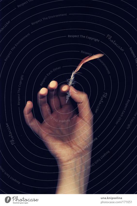 federleicht schön Hand Gefühle Stimmung Arme Haut Finger Feder weich berühren festhalten Falte Leichtigkeit Fingerabdruck Maniküre