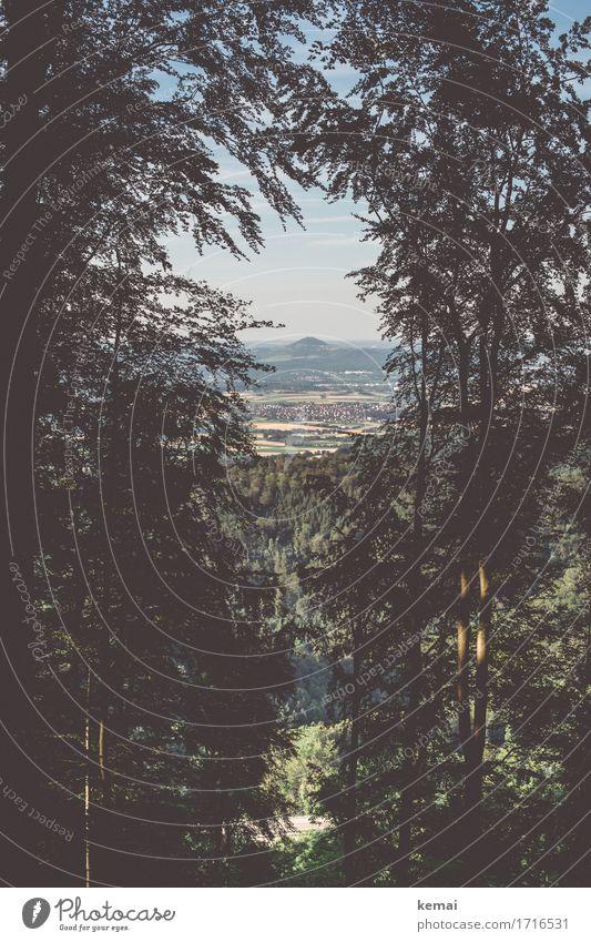 Eingerahmt harmonisch ruhig Ausflug Abenteuer Ferne Freiheit Umwelt Natur Landschaft Pflanze Himmel Sommer Schönes Wetter Baum Hügel Schwäbische Alb