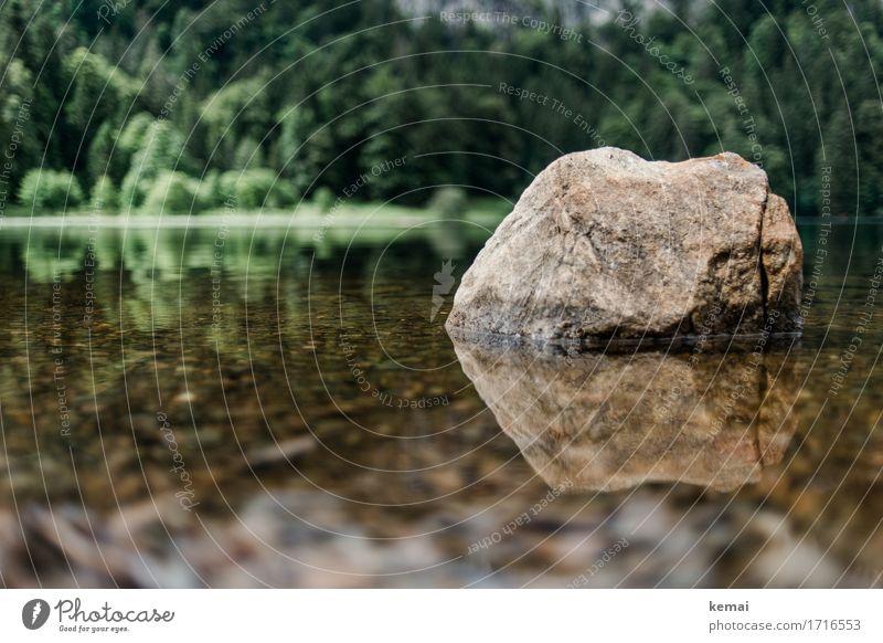Spiegelbild Wellness harmonisch Sinnesorgane Erholung ruhig Abenteuer Freiheit Umwelt Natur Pflanze Wasser Sommer Schönes Wetter Wald Felsen See Stein Wärme