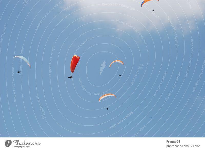 Geburtstagsflieger Mensch Himmel blau rot Ferien & Urlaub & Reisen Freude Sport Freiheit Glück Luft Zufriedenheit Freizeit & Hobby fliegen maskulin Abenteuer
