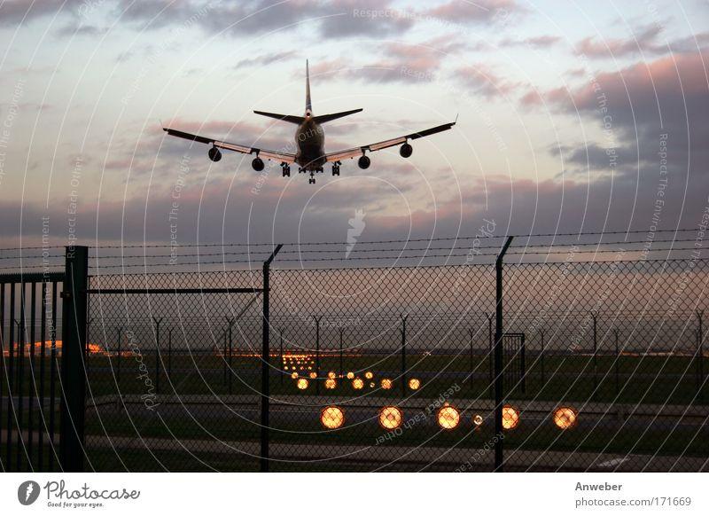 Landendes Flugzeug in Frankfurt blau Ferien & Urlaub & Reisen Ferne Freiheit rosa Verkehr Tourismus Luftverkehr Zukunft Güterverkehr & Logistik Flugzeugstart